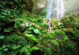 como influye el ecoturismo en el medio ambiente